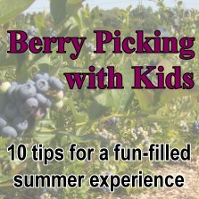 Make the most of the summer fruit picking experience!