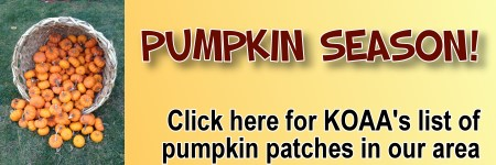Pumpkin Patches in and around Buffalo