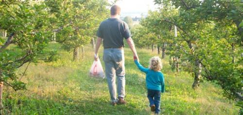Pick apples with your kids in New York